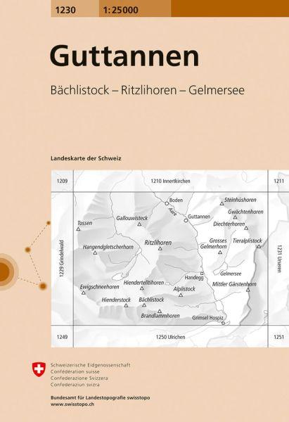 1230 Guttannen topographische Wanderkarte Schweiz 1:25.000